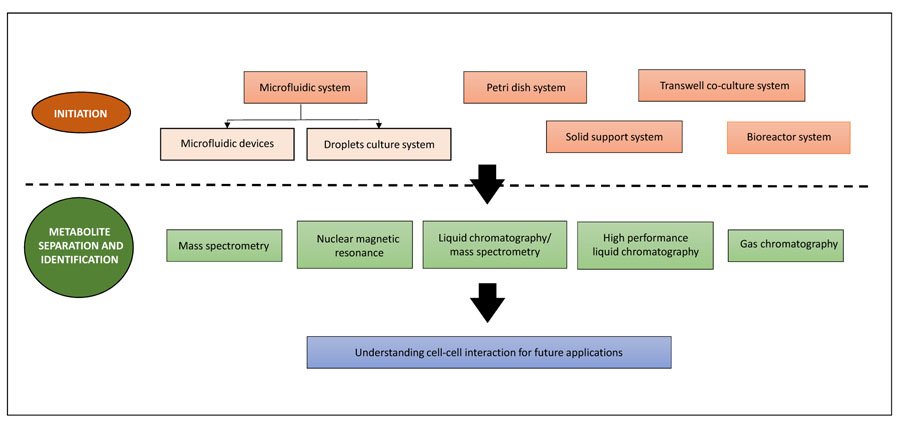 Co-Culture Systems for the Production of Secondary